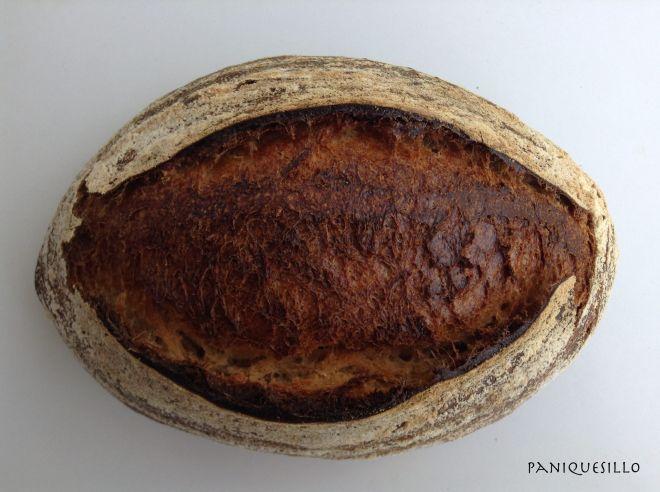 panI blog